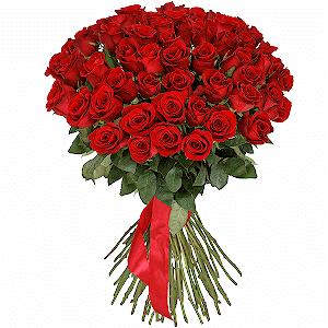 51 красная роза премиум с доставкой в Находке