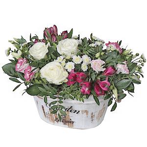 Мечта +30% цветов с доставкой в Находке